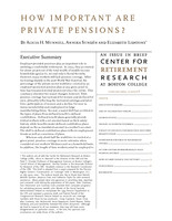 How important are private pensions?