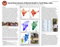 Social determinants of mental health in Tamil Nadu, India