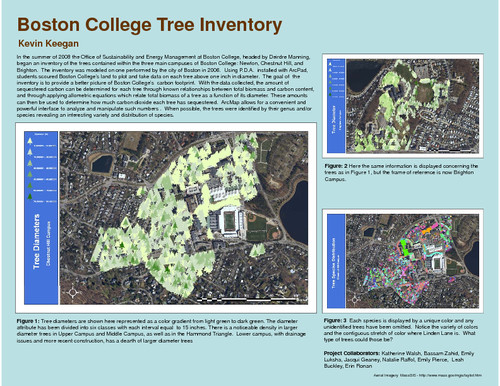 Boston College tree inventory | eScholarship@BC