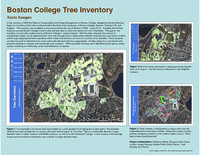 Boston College tree inventory