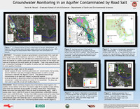 Groundwater monitoring in an aquifer contaminated by road salt