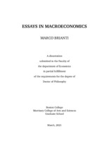 Essays in Macroeconomics